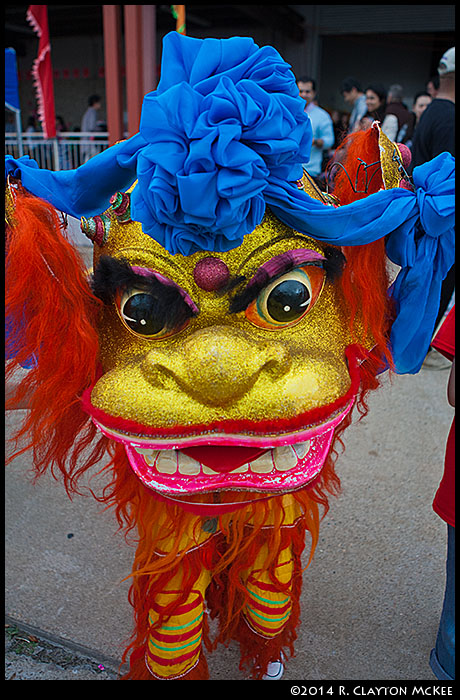 Chinese New Year; Lion Dance, Asian, Lunar